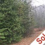 2.84 Acre Lot, Cavan Road, Hamilton Township