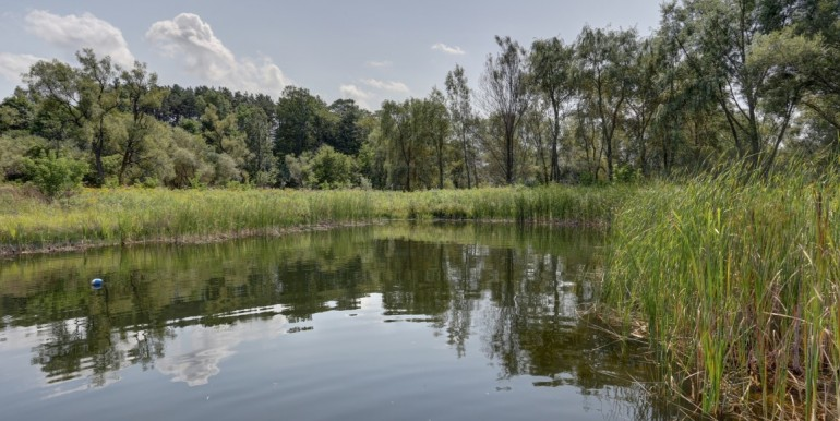 47 Pond